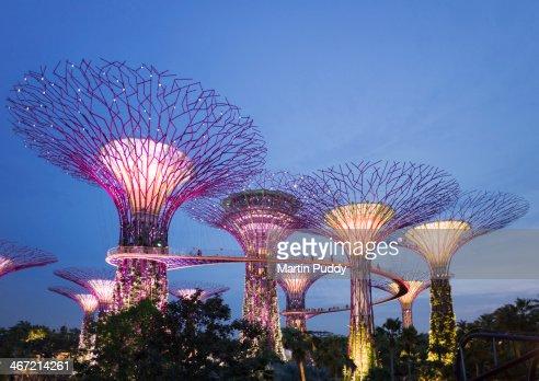 Singapore, Gardens By The Bay, Super Tree Grove