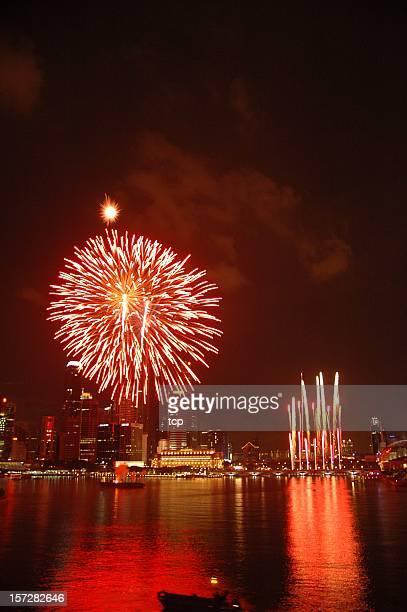 Singapore National Day Parade Firework 2005 @ Esplanade Bay