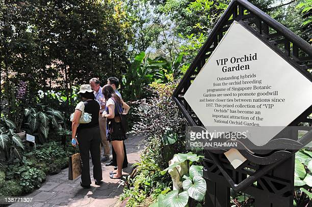 SingaporeDiplomacyBotanyOrchids by Philip Lim This photograph taken on February 7 2012 shows the VIP orchid garden at the National Orchid Garden in...