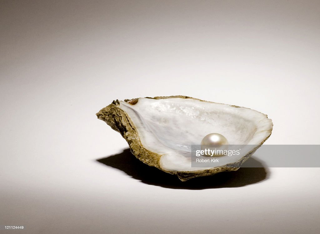 Singe pearl sitting in an oyster shell on a light background