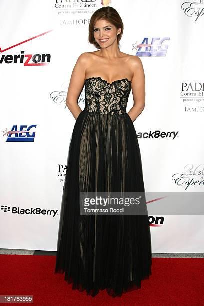 Singer Ana Barbara attends the Padres Contra El Cancer 13th Annual 'El Sueno De Esperanza' gala on September 24 2013 in Los Angeles California