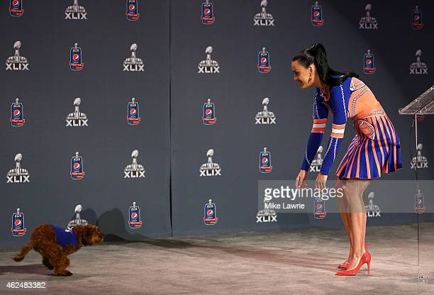 Singer and songwriter Katy Perry plays with her dog Butters during the Pepsi Super Bowl XLIV Halftime Show Press Conference at the Phoenix Convention...
