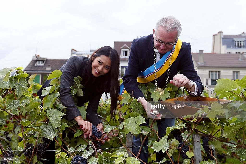 Singer Anggun (L) and gastronomic journalist Jean-Luc Petitrenaud collect grapes during the 79th Montmartre vineyard's harvest on October 13, 2012 in Paris. The 'Vendanges' takes place every year in the heights of the hilly Montmartre neighborhood, in a small vineyard producing a modest 1,500 bottles of Pinot Noir and Gamay. The tiny plot, located at 14-18 rue des Saules (Metro Lamarck-Caulaincourt), reminds us of the area's once bucolic nature-- the village of Montmartre was formerly covered in vineyards.