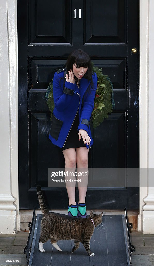 Singer Carly Rae Jepsen meets Chancellor of the Exchequer's cat Freya at Number 11 Downing Street on December 11, 2012 in London, England. Chancellor of the Exchequer George Osborne is hosting his yearly Christmas party for the Starlight charity.
