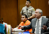 B singer Chris Brown appears in court for a probation violation hearing with his attorney Mark Geragos in Los Angeles Superior Court on May 1 2014 in...