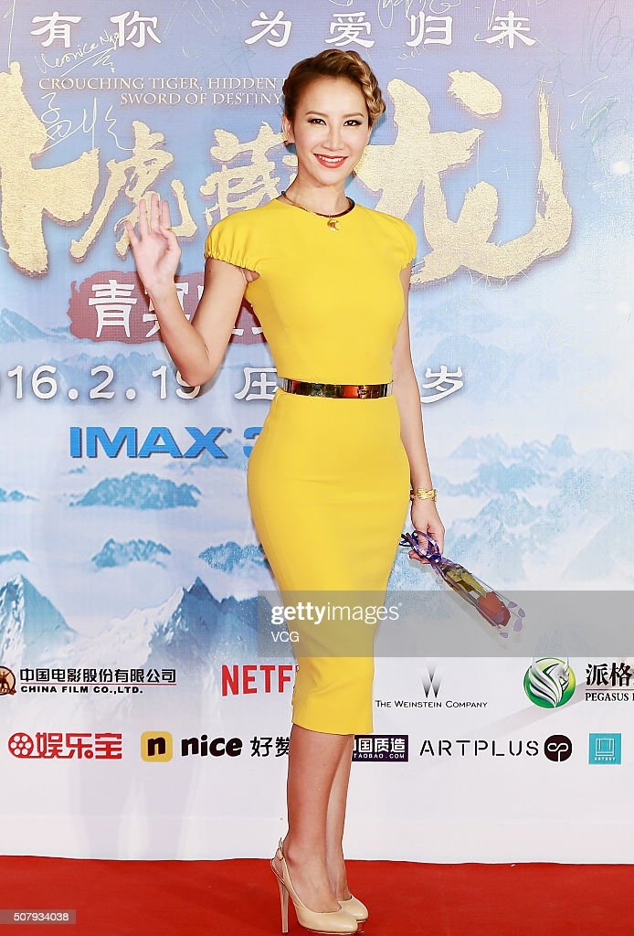 Singer Coco Lee poses on red carpet during the premiere of director Yuen Woo-ping's film 'Crouching Tiger, Hidden Dragon: The Green Destiny' on February 1, 2016 in Beijing, China.