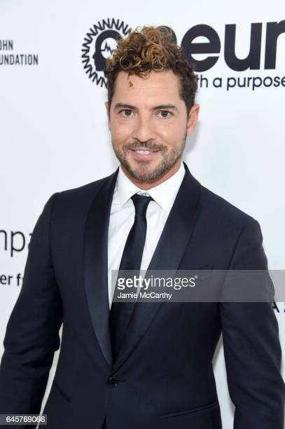 Singer David Bisbal attends the 25th Annual Elton John AIDS Foundation's Academy Awards Viewing Party at The City of West Hollywood Park on February...