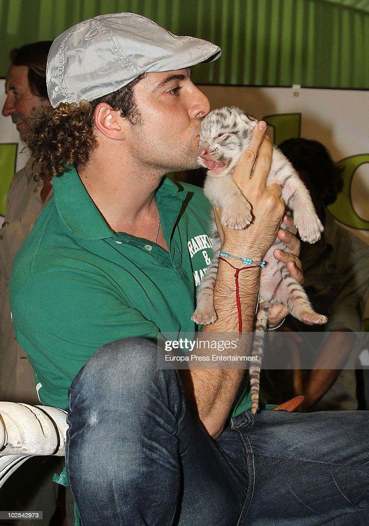 Singer David Bisbal is named godfather of a little white tiger called 'Goliat' at Guillena Zoo on June 29 2010 in Seville Spain
