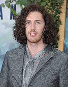 Singer Hozier arrives at the Los Angeles Premiere 'The Legend Of Tarzan' at TCL Chinese Theatre on June 27 2016 in Hollywood California