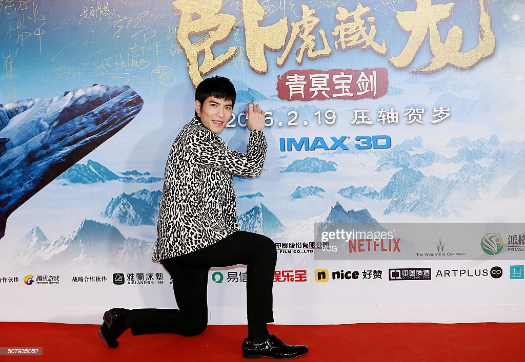 Singer Jam Hsiao poses on red carpet during the premiere of director Yuen Wooping's film 'Crouching Tiger Hidden Dragon The Green Destiny' on...