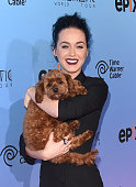 Singer Katy Perry and her dog Butters attend the screening of EPIX's 'Katy Perry The Prismatic World Tour' at The Theatre at Ace Hotel Downtown LA on...