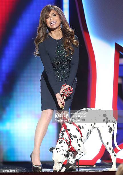 Singer Paula Abdul attends Fox's Cause For Paws All Star Dog Spectacular at Barker Hangar on November 22 2014 in Santa Monica California