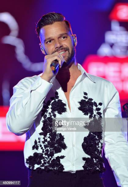 Singer Ricky Martin performs onstage during the 2013 Person of the Year honoring Miguel Bose at the Mandalay Bay Convention Center on November 20...
