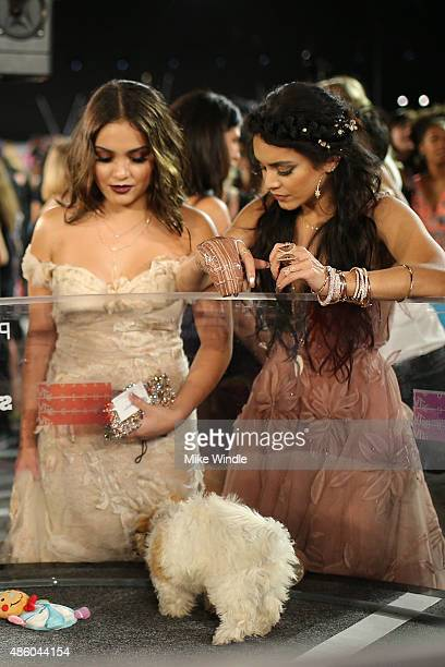 Singer Stella Hudgens and actress/singer Vanessa Hudgens pose with adoptable puppies from The Shelter Pet Project during the 2015 MTV Video Music...