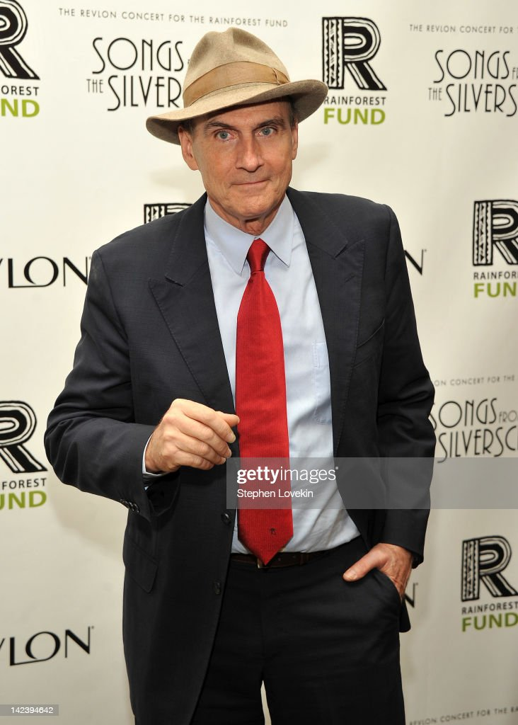 Singer/musician James Taylor attends the after party for the 2012 Concert for the Rainforest Fund at The Pierre Hotel on April 3, 2012 in New York City.