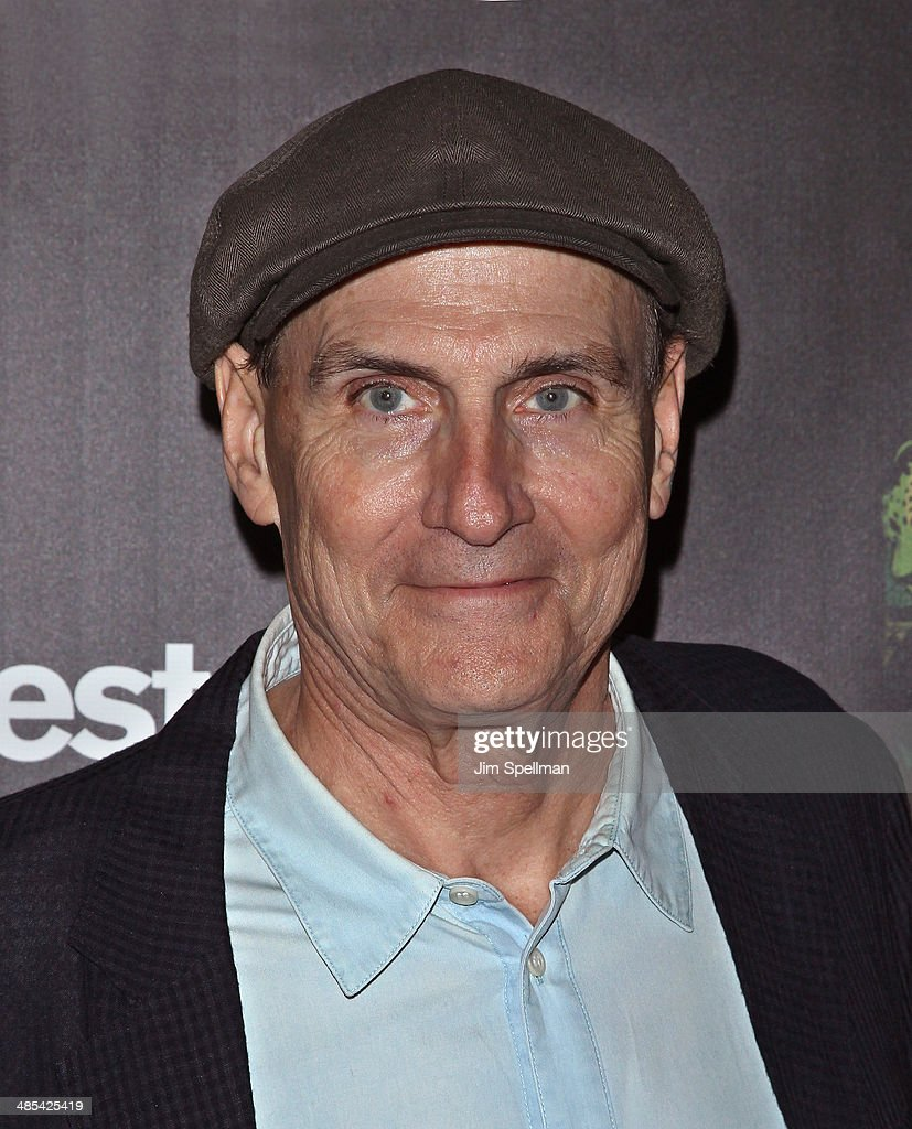 Singer/songwriter James Taylor attends the 25th Anniversary Rainforest Fund Benefit at Mandarin Oriental Hotel on April 17, 2014 in New York City.