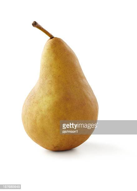 Single Bosc pear isolated on white