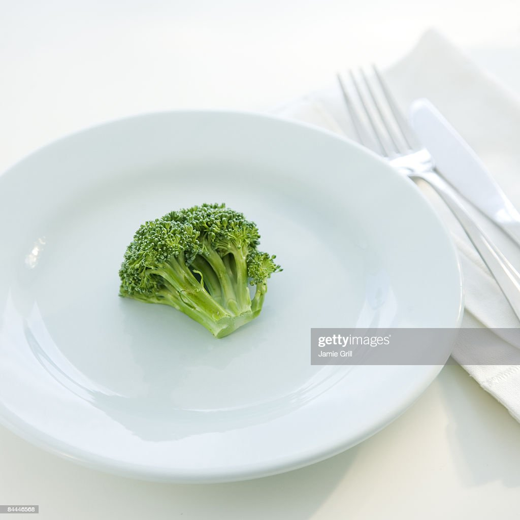 Single Broccoli Floret on Plate : Stock Photo