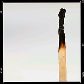 Single burned out match on white background
