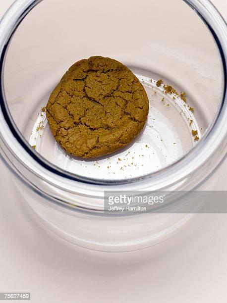 Single cookie in cookie jar, elevated view