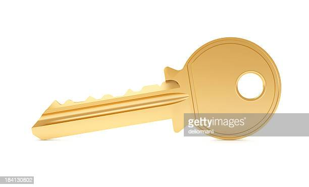Single key on white background
