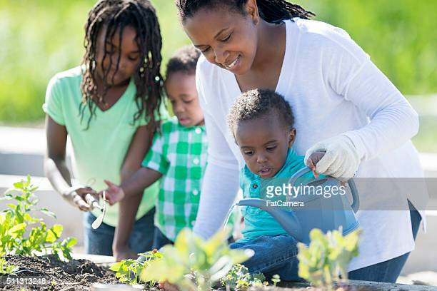 Single Mother Gardening with Her Children