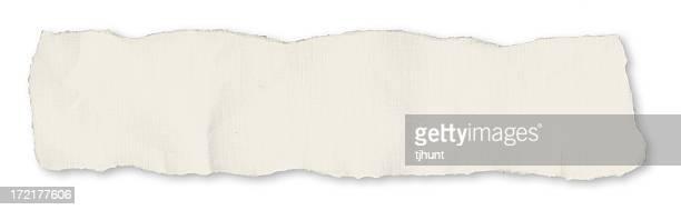 Single newspaper tear - on white