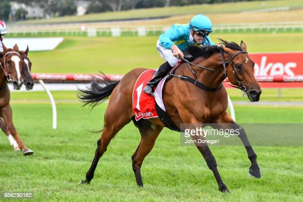 Single Note ridden by Beau Mertens wins the Elaren Security Services Handicap at Ladbrokes Park Hillside Racecourse on March 22 2017 in Springvale...