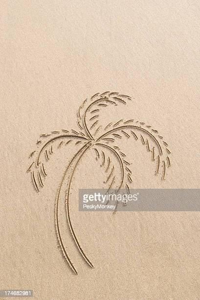 Palmier simple dessin dans le sable