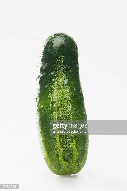 Single pickle (close-up)