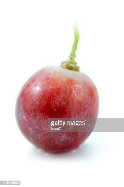 single red grape
