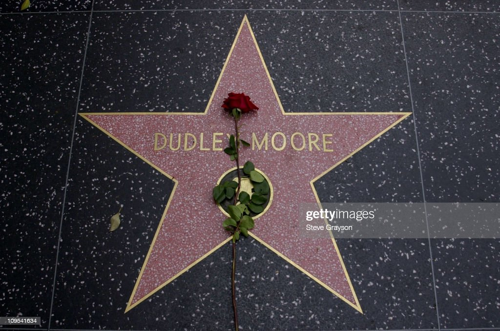 A single rose lies on the Hollywood Walk of Fame star of the late actor <a gi-track='captionPersonalityLinkClicked' href=/galleries/search?phrase=Dudley+Moore&family=editorial&specificpeople=209351 ng-click='$event.stopPropagation()'>Dudley Moore</a>.