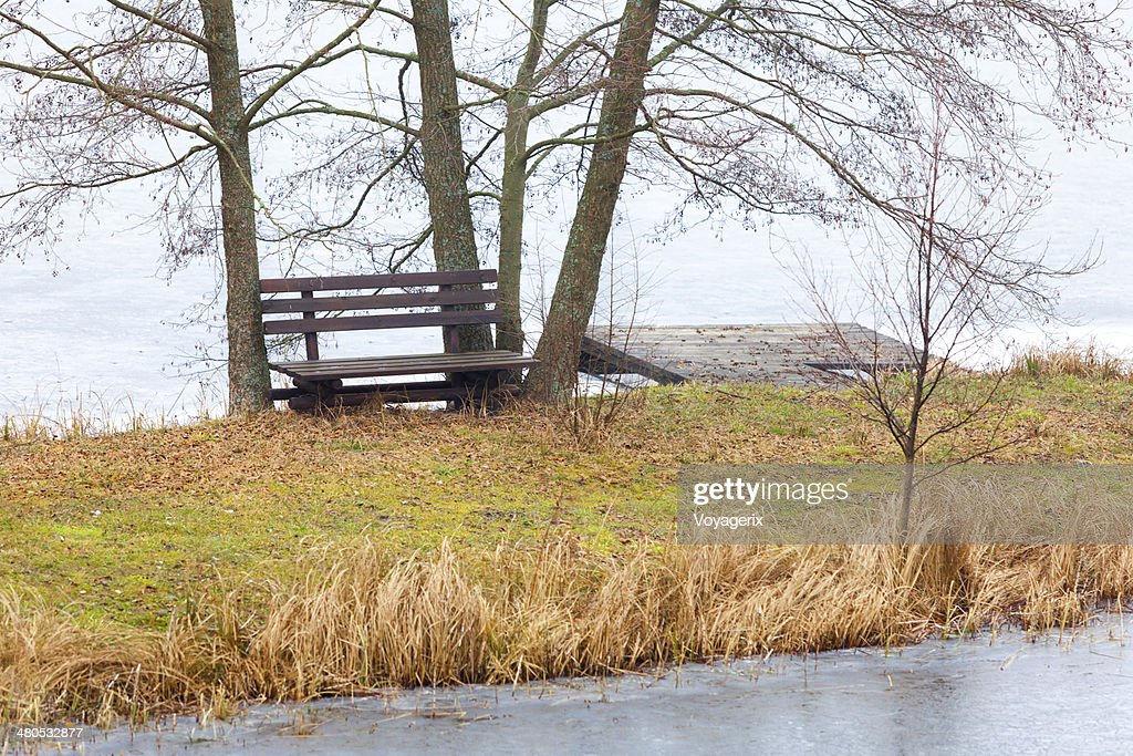 Single wooden bench and trees on river or lake shore : Stockfoto