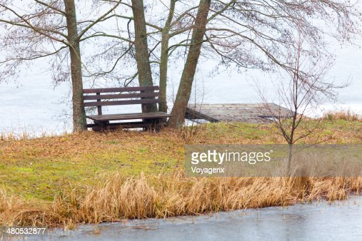 Single wooden bench and trees on river or lake shore : Stock Photo