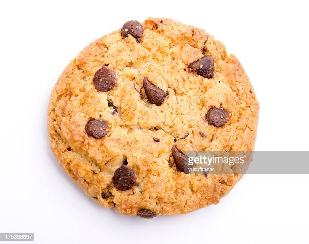 A singular chocolate chip cookie
