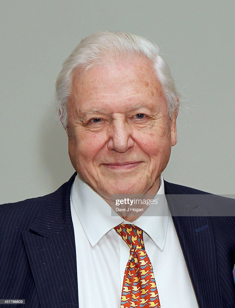 Sir <a gi-track='captionPersonalityLinkClicked' href=/galleries/search?phrase=David+Attenborough&family=editorial&specificpeople=224654 ng-click='$event.stopPropagation()'>David Attenborough</a> attending the British Academy Children's Awards Arrivals at the Hilton Hotel on November 24, 2013 in London, England.