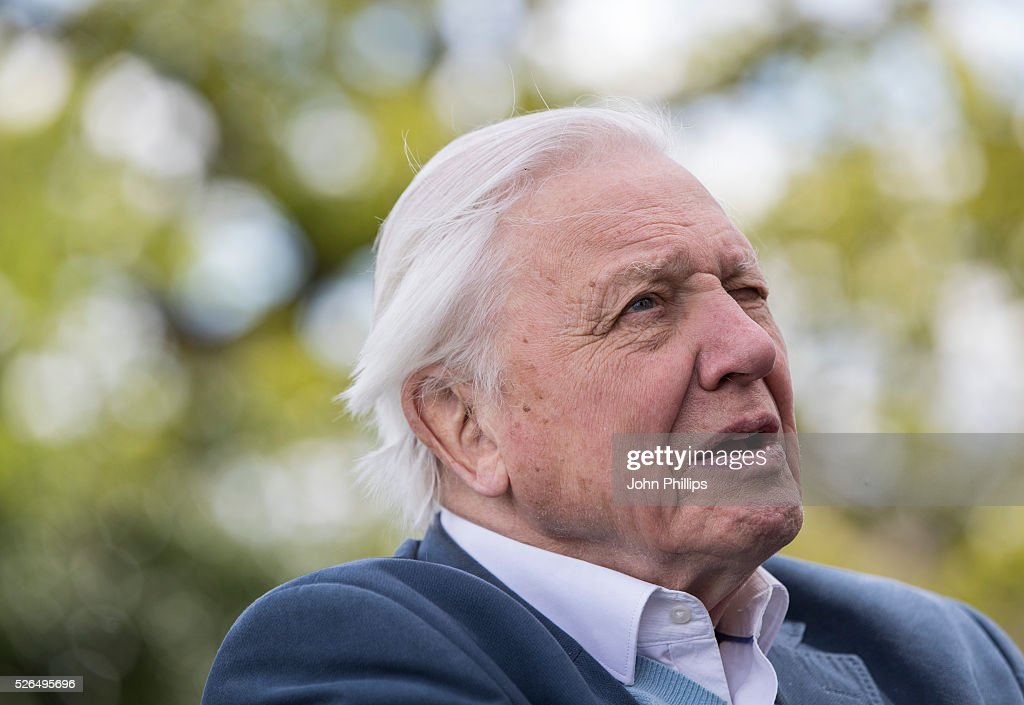 Sir David Attenborough attends the launch of the London Wildlife Trust's new Flagship nature reserve Woodberry Wetlands on April 30, 2016 in London, England.