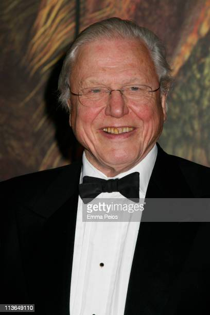 Sir David Attenborough attends the premiere of 'Flying Monsters 3D with David Attenborough' at BFI Southbank on May 4 2011 in London England