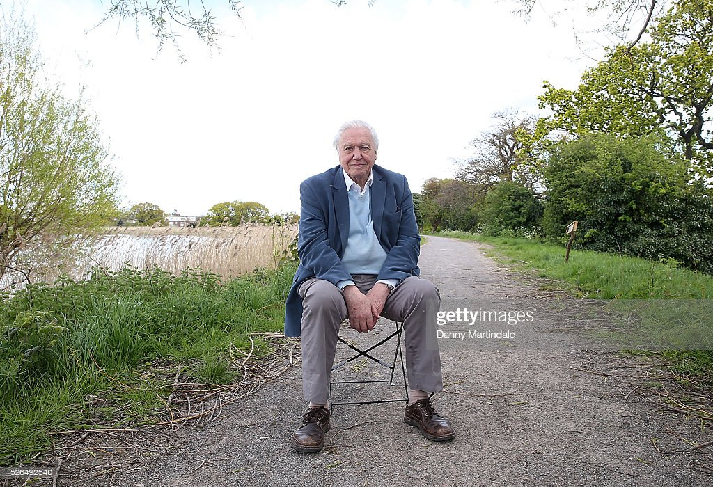 Sir <a gi-track='captionPersonalityLinkClicked' href=/galleries/search?phrase=David+Attenborough&family=editorial&specificpeople=224654 ng-click='$event.stopPropagation()'>David Attenborough</a> opens Woodberry Wetlands on April 30, 2016 in London, United Kingdom.