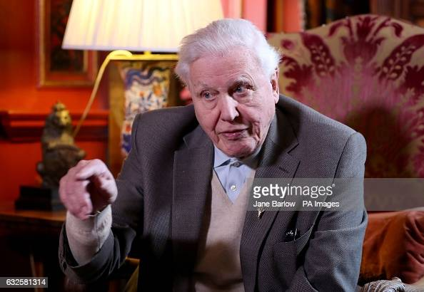 Attenborough Stock Photos And Pictures Getty Images