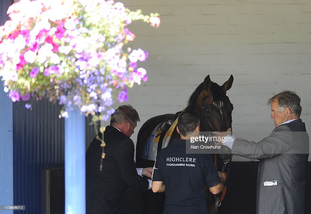 Sir Michael Stoute with Telescope in the saddling boxes at Leicester racecourse on July 18, 2013 in Leicester, England.