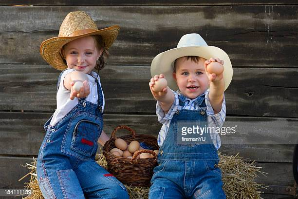 Sister and brother collecting eggs at farm.