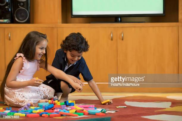 Sister and brother playing with building block