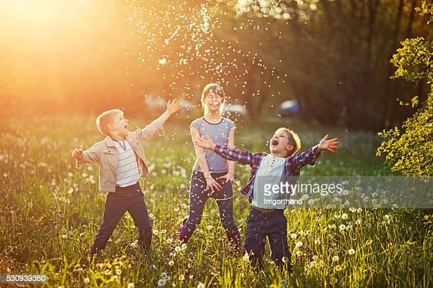 Frères et sœurs jouant dans un champ de pissenlits