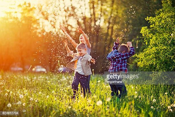 Irmã e irmãos a brincar num campo de dente-de-leão
