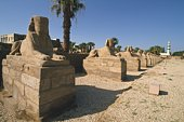 Site of Luxor, Egypt, Low Angle View