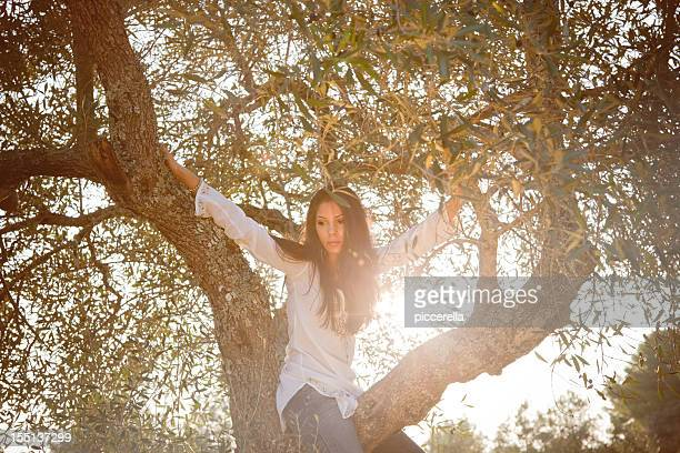 Sitting On An Olive Tree