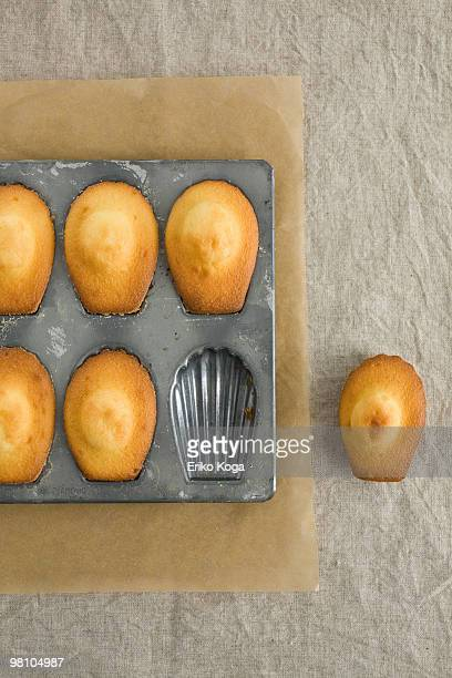 Six madeleines in tin and one put beside