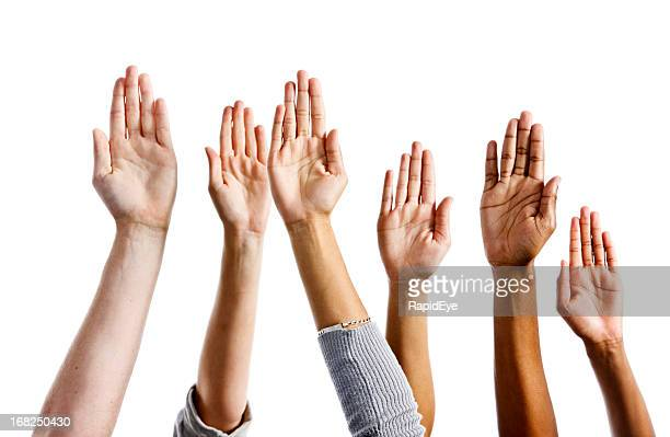 Six mixed hands raised against white background