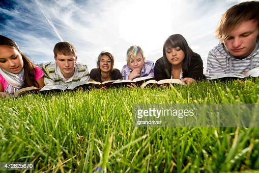 Six Racially Diverse Teenagers Studying on a Lawn